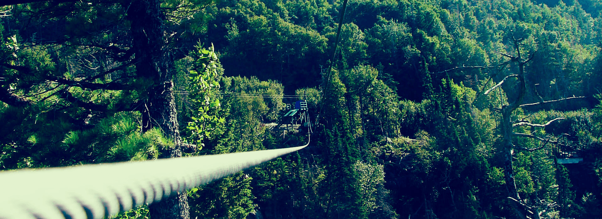 tree top adventures in the mountains header