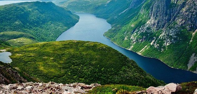 Gros Morne, canopy tour