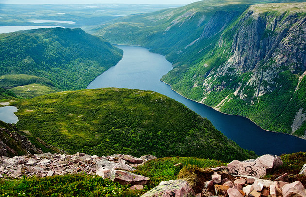 Canopy Of Gros Morne National Park Witnessing Natural