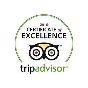 Trip Advisor's Certificate of Excellence for Marble Zip Tours